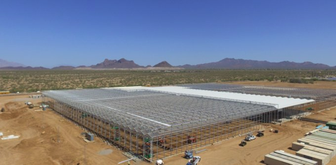Figure 5. Marana, Arizona greenhouse under construction, which started in 2017.