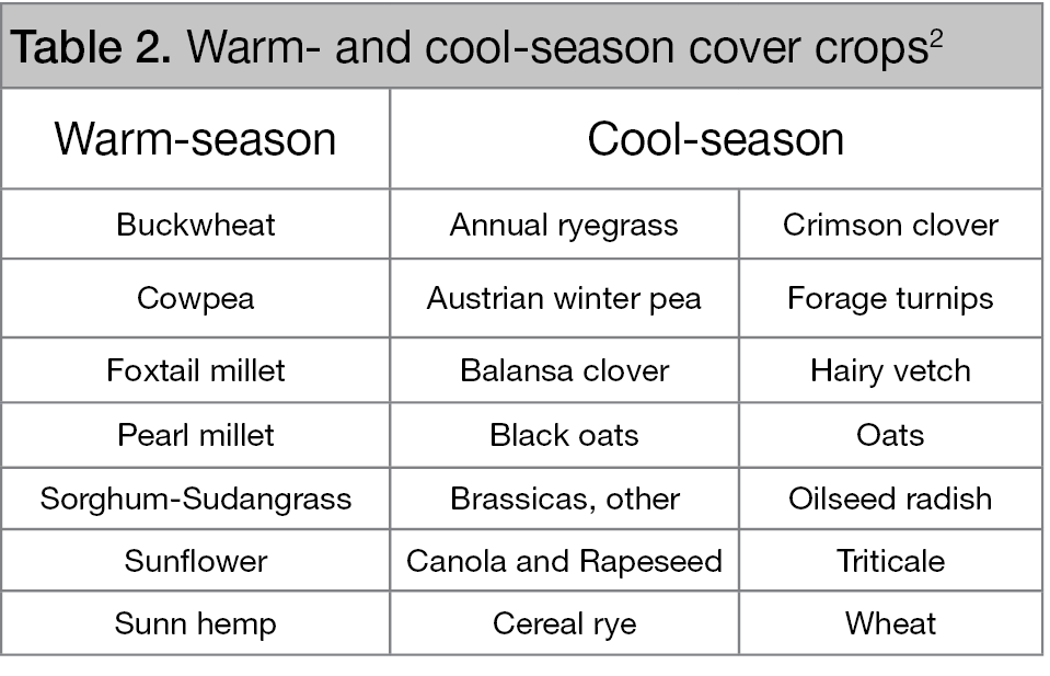 Warm and Cool Season Cover Crops