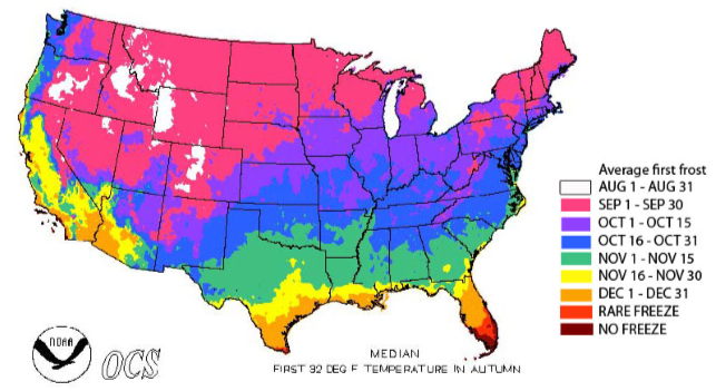 Map of median first frost (32 °F) dates for the continental United States. Source: National Oceanic and Atmospheric Administration. Median first 32 deg F temperature in autumn. http://www.ncdc.noaa.gov/. Source: Neild, R.E. and Newman, J.E. 1990. Growing Season Characteristics and Requirements in the Corn Belt. Purdue University Extension. National Corn Handbook, NCH-40.