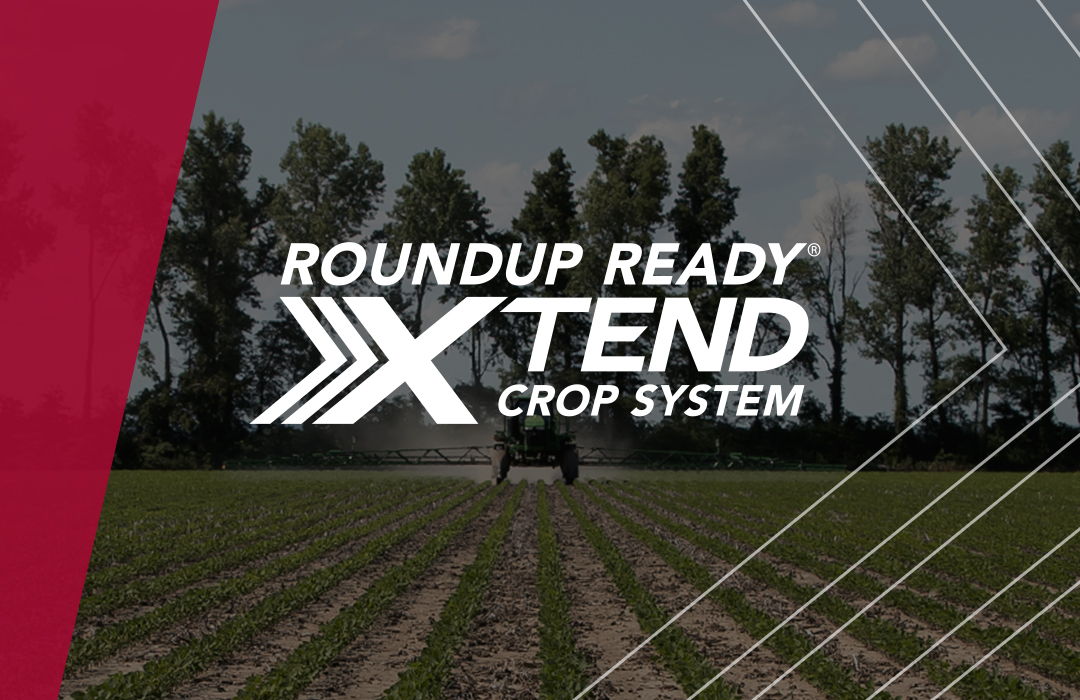 Official Roundup Ready Xtend Crop System logo on the Channel Website